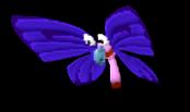 09 01 flutterbug