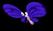 09 05 flappillon