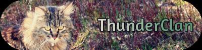 File:Thunn.png