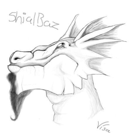 File:ShialBaz by SireniSireni.jpeg
