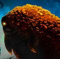Thumbnail for version as of 02:32, September 26, 2012