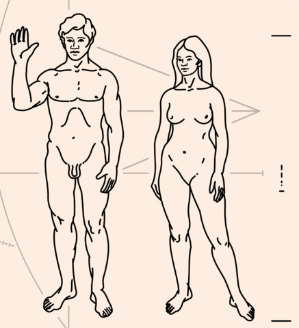 File:Pioneer Plaque.png