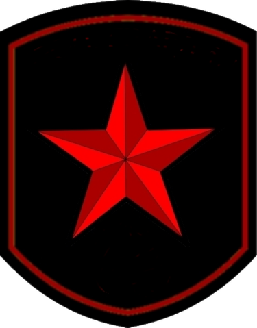 File:Armypatch Vidalie.png