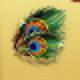 Peacockfeathers