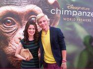 Chimpanzee14