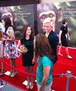 Chimpanzee19