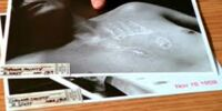 Silver Handprint