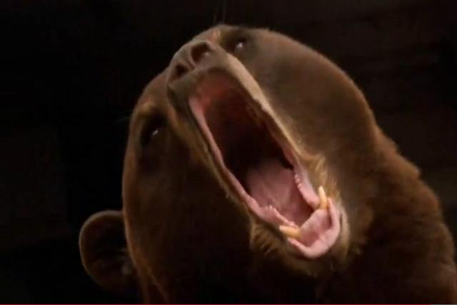 File:Bear4.png