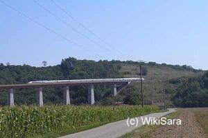 WS-437-Savas1.jpg