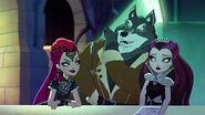DG TMS - mira eg badwolf raven
