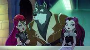 DG TMS - badwold scolding mira raven