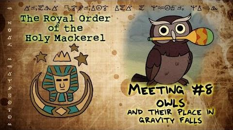 OWLS AND THEIR ROLE IN GRAVITY FALLS The Royal Order of the Holy Mackerel