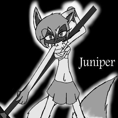 Juniper's Idea Look