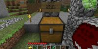 Quest: Minecity Building