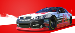 Series Chase Elliott's Champion Cup