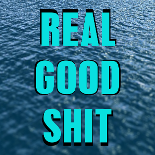 File:REALGOODSHIT 9wyRp LA.png