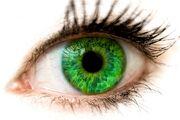 Syl's eyes