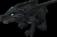 Baby dragon (black) pet