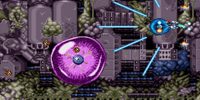 Phantom Cell