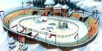 Reindeer Stadium