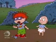 Rugrats - Chuckie's Duckling 214