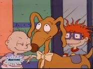 Spike the Wonder Dog 86