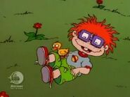 Rugrats - Chuckie's Duckling 61