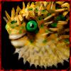 Npc - Blowfish