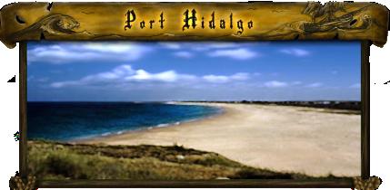File:Port - Port Hidalgo.png