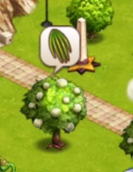 File:Vanilla tree.jpg