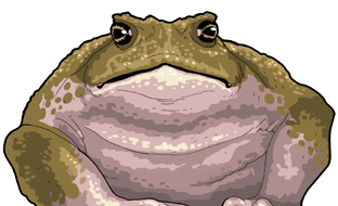 File:GIANT PLAGUED TOAD.png