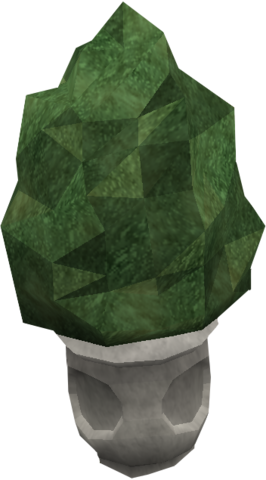 File:Small evergreen.png