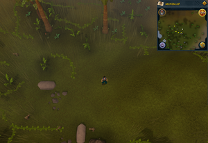 Compass clue Oo'glog hunter area