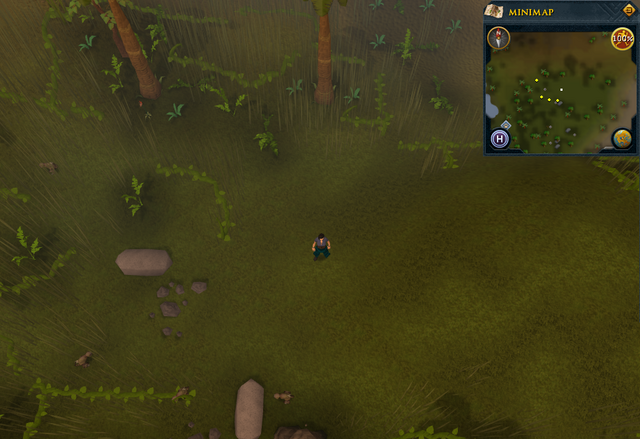 File:Compass clue Oo'glog hunter area.png