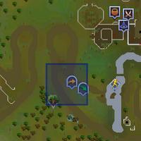 Fairy ring CLR location