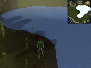 Compass clue Ardougne south-east of Ardougne Zoo