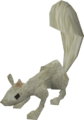 Baby squirrel (light grey) pet.png