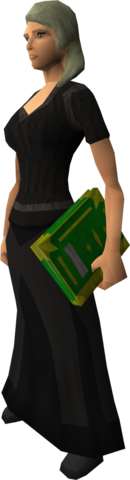 File:Illuminated Book of Balance equipped.png