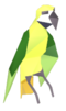 Drunk parrot detail