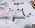 Polar Kebbit Hunting strategy.png