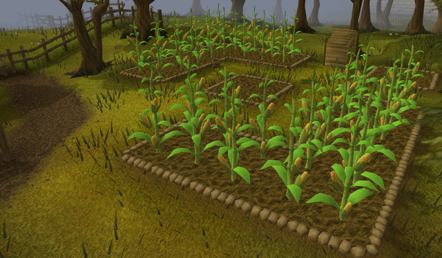 File:Runescape - Sweetcorn Patch.png