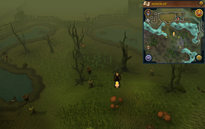 Scan clue Haunted Woods south of Alice's Farming Shop