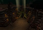 Mole lair exit