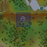 Fairy ring CJS location