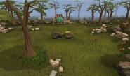 Carnivorous chinchompa hunting area