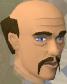 Sigmund chathead