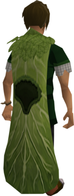Brassican cloak equipped