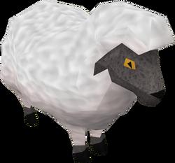 Sheep (Back to the Freezer)
