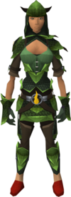 Guthix dragonhide blessed set equipped (female)
