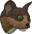 File:Pet kitten (brown) chathead.png